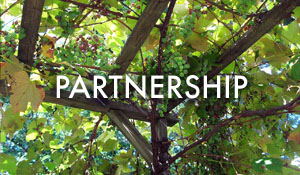 Our ECCC Partnership
