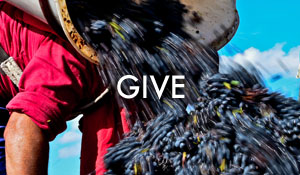 Give-featured